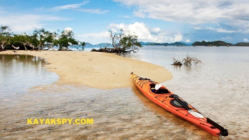 Canoe or Kayak For Shallow Water